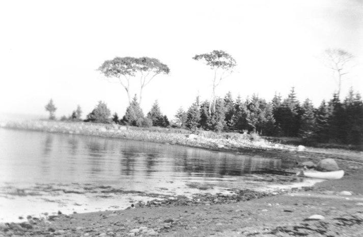 oakbeach