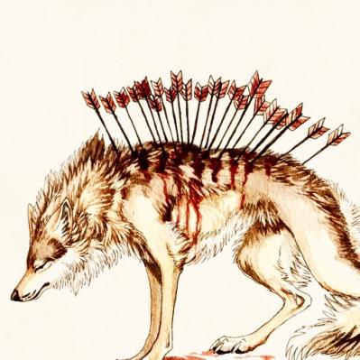 wolf-d7r3116-1